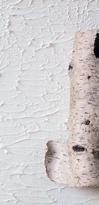 Birkenrinde auf Holz